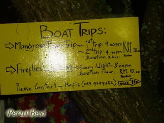 boatTripsAvailable